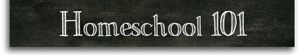Homeschool 101 image-page-0